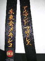 Kanji orange gold shotokan