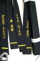 specialized Hiragana embroidery