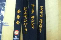 beginner Wadoryu belt