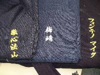 worldwide training lapel