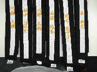 Wadoryu uniform Stripe height