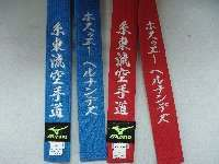 advanced yellow belt