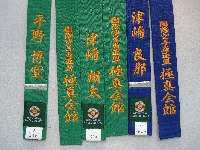 Bar stripe practitioners belt