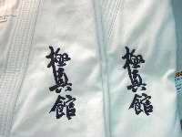 judo translate lapel