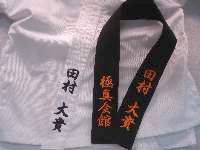 brown shotokan motion